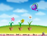 Игра Flower Watering