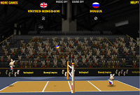 игра Волейбол для кроликов (BunnyLimpics Volleyball)