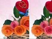 игра Real Love 5 различий